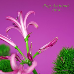 VA-Pop Ambient 2014